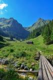 Montañas cárpatas rumanas fotos de archivo