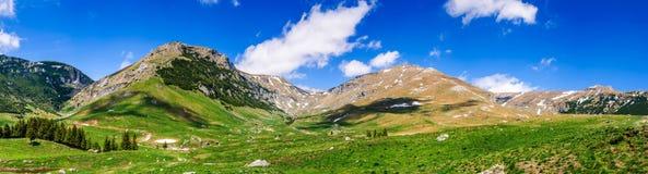 Montañas cárpatas, Rumania Imagen de archivo libre de regalías