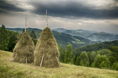 Montañas cárpatas ucrania Imagen de archivo libre de regalías