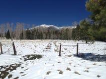 Montañas capsuladas nieve de Arizona septentrional foto de archivo