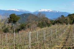 Montañas capsuladas nieve de Montseny Fotografía de archivo libre de regalías