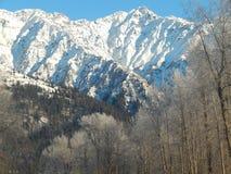 Montañas capsuladas nieve a lo largo de Haines Highway Imagen de archivo