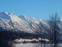 Montañas capsuladas nieve a lo largo de Haines Highway Foto de archivo libre de regalías