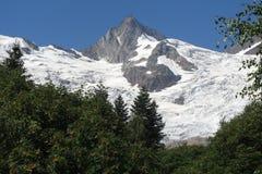 Montañas caucásicas en verano Paseo en Dombai Foto de archivo libre de regalías
