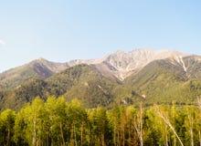 Montañas con el bosque Foto de archivo libre de regalías