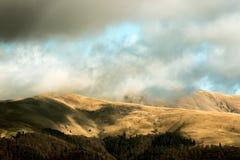 Montañas con el bosque debajo del cielo azul nublado Foto de archivo