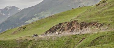 Montañas con errores que conducen en el extremo del camino fotografía de archivo libre de regalías