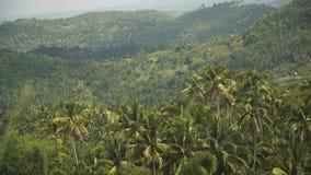 Montañas con la isla tropical de Filipinas Cebú del bosque fotos de archivo