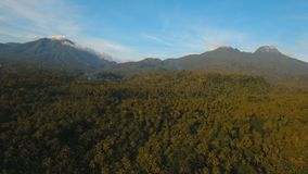Montañas con la isla tropical Filipinas de Camiguin del bosque almacen de video