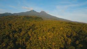 Montañas con la isla tropical Filipinas de Camiguin del bosque almacen de metraje de vídeo