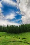 Montañas con las nubes del bosque y del cielo azul Imágenes de archivo libres de regalías
