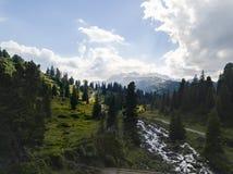 Montañas con un río y muchos abetos foto de archivo libre de regalías