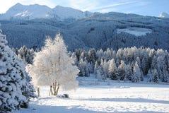 Montañas cubiertas con nieve Foto de archivo libre de regalías