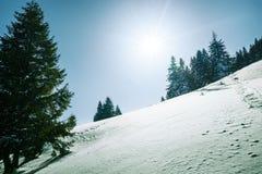 Montañas cubiertas por la nieve Fotos de archivo libres de regalías