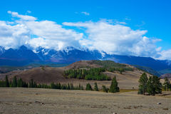 Montañas de Altai del glaciar de Aktru Foto de archivo libre de regalías