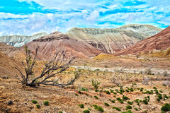 Montañas de Altyn Emel Aktau en Kazakhstan imagen de archivo libre de regalías