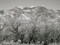 Montañas de Arizona Foto de archivo libre de regalías