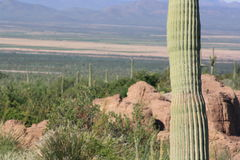 Montañas de Arizona Fotografía de archivo