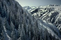 Montañas de Aspen Foto de archivo