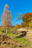 Montañas de Autumn Carpathian, Ucrania fotos de archivo libres de regalías