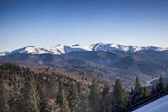 Montañas de Baiului Imagenes de archivo