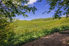 Montañas de Bieszczady en Polonia Imagen de archivo libre de regalías
