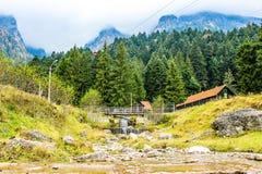Montañas de Bucegi Imágenes de archivo libres de regalías