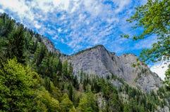 Montañas de Bucegi Fotografía de archivo libre de regalías
