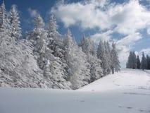 Montañas de Bucegi - visión 2 Foto de archivo libre de regalías