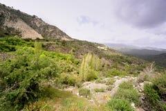 Montañas de Chipre Fotos de archivo