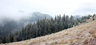 Montañas de Ciucas en una mañana brumosa Imagen de archivo