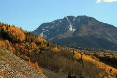Montañas de Colorado del otoño Imágenes de archivo libres de regalías