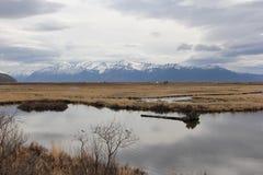 Montañas de Denali Imagenes de archivo