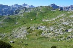 Montañas de Dinaric en Montenegro Imagen de archivo libre de regalías