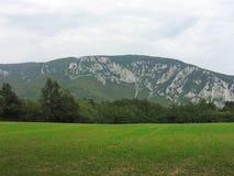 Montañas de Homoljske Fotos de archivo libres de regalías