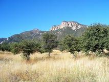 Montañas de Huachuca Imágenes de archivo libres de regalías