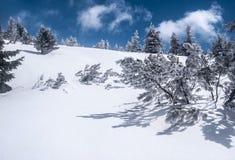 Montañas de Jeseniky del invierno en República Checa con nieve, pequeña trenza y el cielo azul con las nubes Foto de archivo libre de regalías