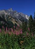 Montañas de la Columbia Británica Fotos de archivo libres de regalías