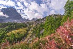 montañas de la dolomía fotografía de archivo libre de regalías