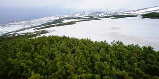 Montañas de la nieve Imagen de archivo