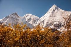 Montañas de la nieve en Szechwan Imagen de archivo libre de regalías