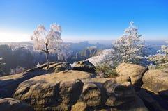 Montañas de la piedra arenisca de Elba en el invierno, Carolarock Foto de archivo