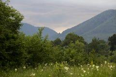 Montañas de Lepsa Vrancea, puesta del sol Fotos de archivo