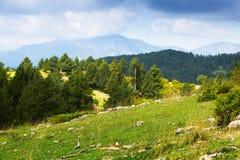 Montañas de los Pirineos con los árboles de pino Imagen de archivo