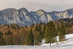 Montañas de Postavaru Imágenes de archivo libres de regalías
