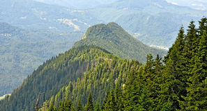 Montañas de Postavarul Fotos de archivo