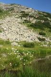 Montañas de Rila en Bulgaria Imagen de archivo