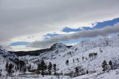Montañas de Rockie Fotografía de archivo