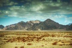 Montañas de Sinaí Fotos de archivo