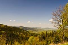 Montañas de Sudeten Imagen de archivo libre de regalías